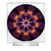 Mandala - Talisman 1432 Shower Curtain