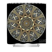Mandala - Talisman 1435 Shower Curtain