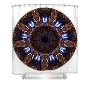 Mandala - Talisman 1436 Shower Curtain