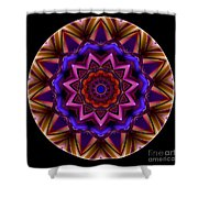Mandala - Talisman 1439 Shower Curtain