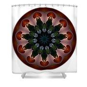 Mandala - Talisman 1440 Shower Curtain
