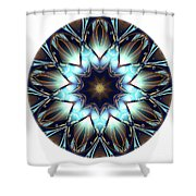 Mandala - Talisman 1446 Shower Curtain