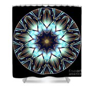 Mandala - Talisman 1447 Shower Curtain