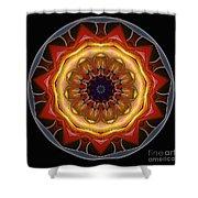Mandala - Talisman 1452 Shower Curtain
