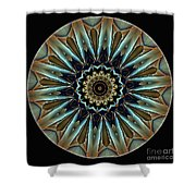 Mandala - Talisman 1458 Shower Curtain