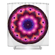 Mandala - Talisman 1486 Shower Curtain