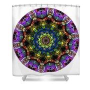 Mandala - Talisman 1526 Shower Curtain
