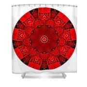 Mandala - Talisman 1541 Shower Curtain