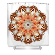 Mandala - Talisman 1620 Shower Curtain