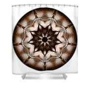 Mandala - Talisman 3701 Shower Curtain