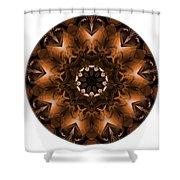 Mandala - Talisman 3703 Shower Curtain