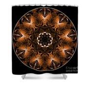 Mandala - Talisman 3704 Shower Curtain