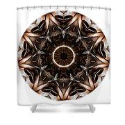 Mandala - Talisman 3705 Shower Curtain