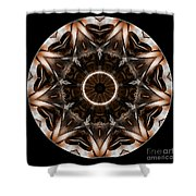 Mandala - Talisman 3706 Shower Curtain