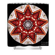 Mandala - Talisman 4009 Shower Curtain
