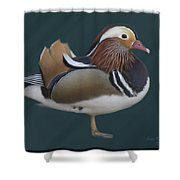 Mandarin Duck II Shower Curtain