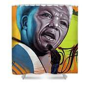 Mandela Watching Shower Curtain