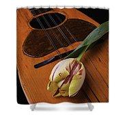 Mandolin And Tulip Shower Curtain