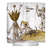 Mandrake And Herbalist Shower Curtain