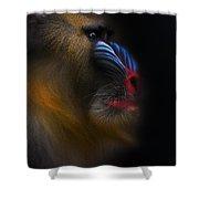 Mandrill Monkey Male Closeup Portrait Shower Curtain