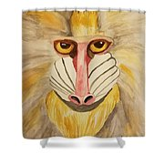Mandrill Monkey Shower Curtain