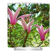 Mangolia Tree Flowers Art Prints Pink Magnolias Baslee Troutman Shower Curtain