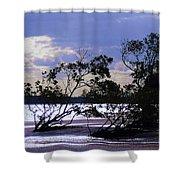 Mangrove Silhouettes Shower Curtain