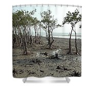 Mangroves Shower Curtain