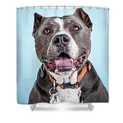 Manny 5 Shower Curtain