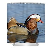 Manny Afloat Shower Curtain