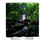 Manoa Falls Stream Shower Curtain