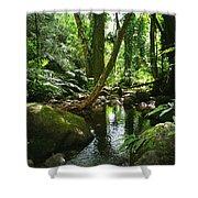 Manoa Valley Stream Shower Curtain