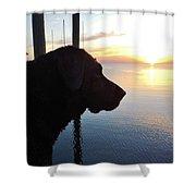 Mans Best Friend Sunset 3 411 Shower Curtain