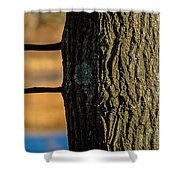 The Many Lines Of Nature Shower Curtain