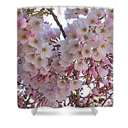 Many Pink Blossoms Shower Curtain