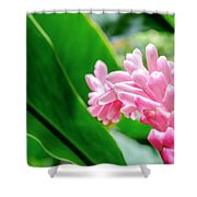 Many Pink Petals Shower Curtain