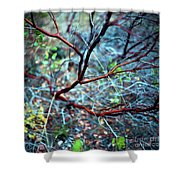 Manzanita Abstract Shower Curtain