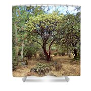 Manzanita And Pine Trees At Meadow Edge Shower Curtain