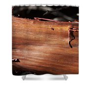Manzanita Trunk Shower Curtain