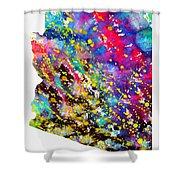 Map Of Arizona-colorful Shower Curtain