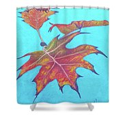 Drifting Into Fall Shower Curtain by Phyllis Howard