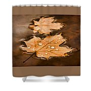 Maple Leaves And Drops Pnt Shower Curtain