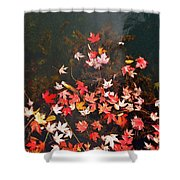 Maple Leaves On The Water  Shower Curtain