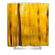 Maple Magic Shower Curtain