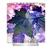 Maple Magnetism Shower Curtain