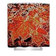 Maple Mania 11 Shower Curtain