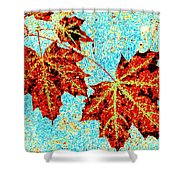Maple Mania 13 Shower Curtain