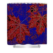 Maple Mania 15 Shower Curtain