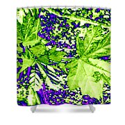 Maple Mania 19 Shower Curtain