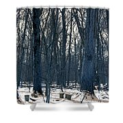 Maple Sirup Infrared N01 Shower Curtain